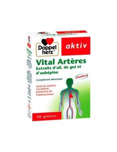 Vital Artères Doppel Herz 90 gélules